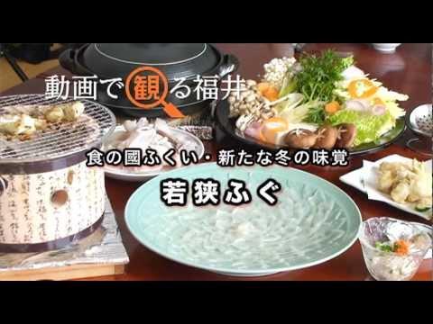 動画で観る福井 食の國ふくい・新たな冬の味覚「若狭ふぐ」