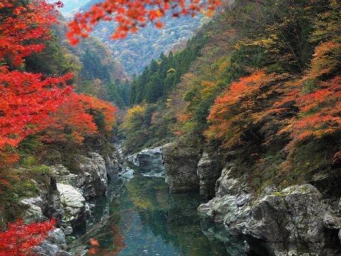 Beautiful Tokushima(4K)