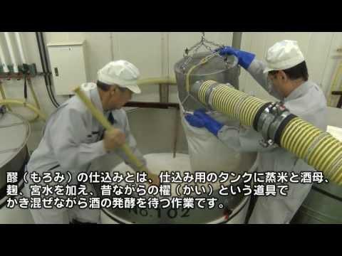 酒どころ「灘五郷」の日本酒寒仕込み/神戸市東灘区魚崎南町
