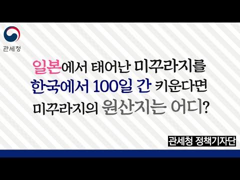 일본에서 난 미꾸라지를 한국에서 100일 간 키우면 원산지는?
