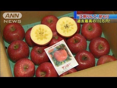 過去最高の110万円!盛岡で「江刺りんご」初競り(11/11/12)