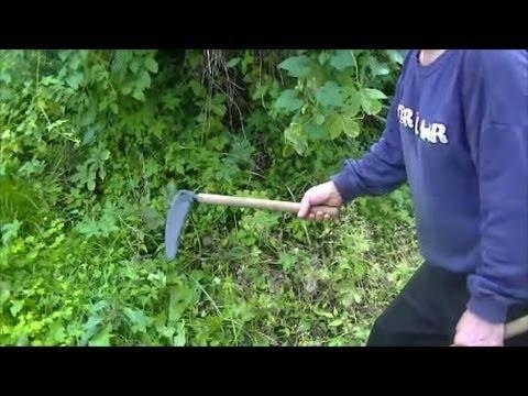 信州鎌で草刈