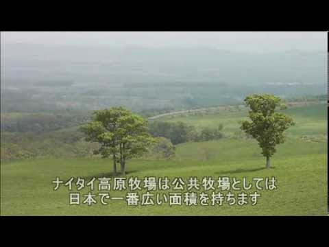 上士幌町ナイタイ高原