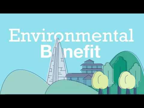 World Environment Day 2020