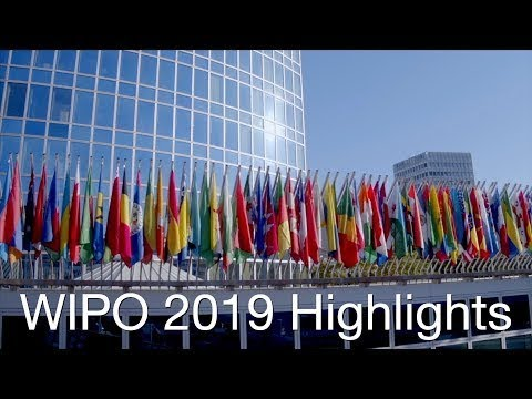 WIPO 2019: A Year in Highlights