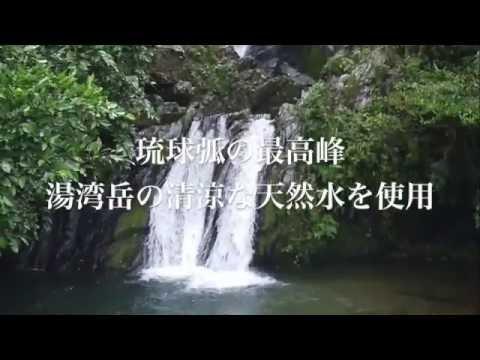 奄美大島の黒糖焼酎 紅さんご