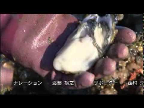 ザ・広島ブランド(6/6)「~味わいの一品~広島の酒」
