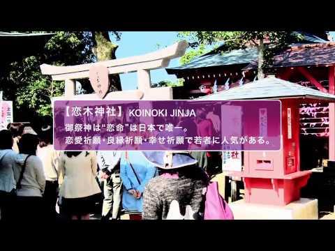 【パワースポット編】 福岡県は、 日本でいちばん 大きな○○○がある。