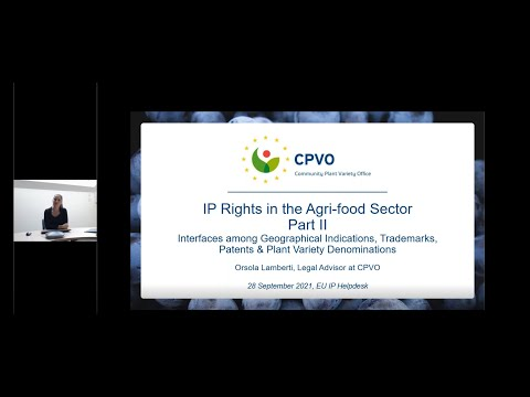 Webinar: IPR in Agri food Sector II: conflicts and synergies among GIs, Trademarks, Patents & PVDs