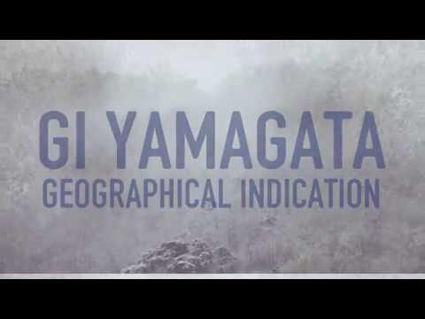 GI yamagata promotion