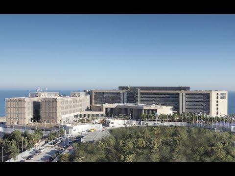 The European Union Intellectual Property Office (EUIPO)