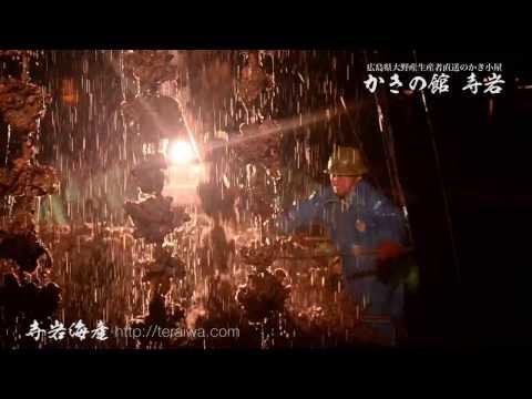 広島県廿日市市大野での牡蠣水揚げ | かきの館 寺岩