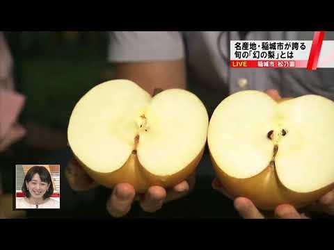 東京・稲城で栽培される「幻の梨」