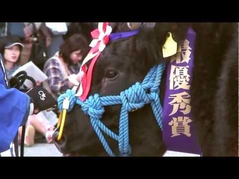 自然のめぐみ 三田牛 ~三田特産物編~