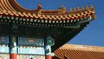 中国商標実務 商標登録出願行為の規範化に関する若干の規定 (国家市场监督管理总局令 第17号 2019年12月1日施行)