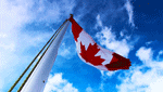 商標登録insideNews: Canada Addresses Trademark Trolls Problem | The National Law Reviews