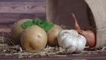 商標登録insideNews: 消費者にアピール①識別②信用③品質 売れ筋野菜 名前が決め手   日本農業新聞