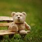 第28類 動物おもちゃ 人形