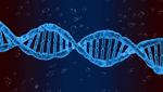 商標登録insideNews: USPTO rejects DNA sequencing trademark | LifeSciences IPReview